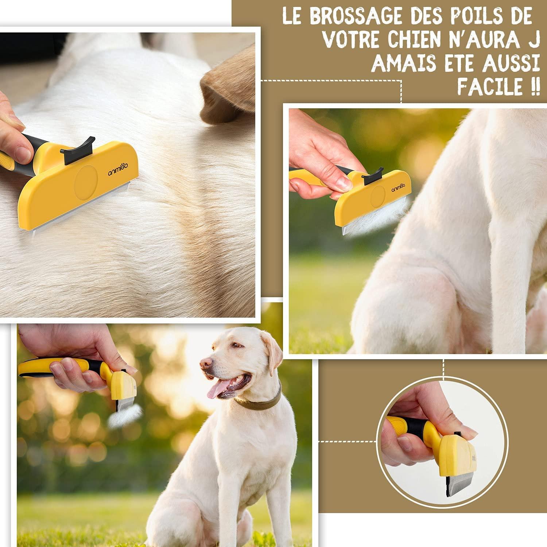 Brosse animigo chien 4