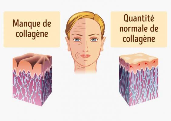 Collagene info 3