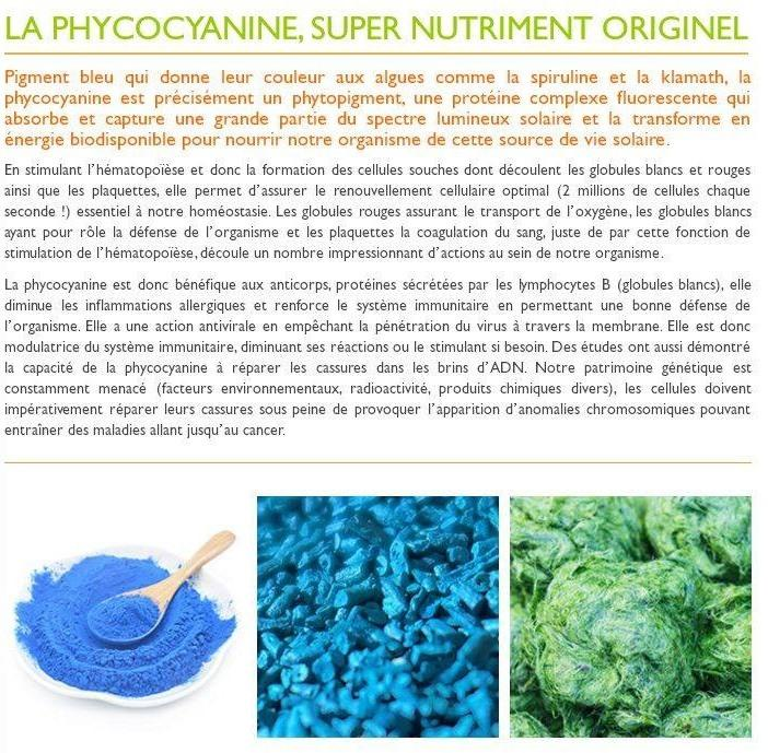 Info phycocyanine